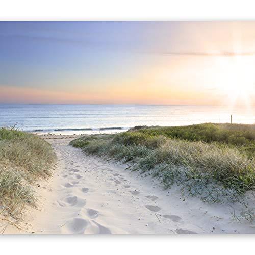 murando Fototapete Meer Strand 300x210 cm - Vlies Tapete - Moderne Wanddeko - Design Tapete - Wandtapete - Wand Dekoration – Sand See Himmel Sonnenuntergang Weg Natur Landschaft c-A-0043-a-a