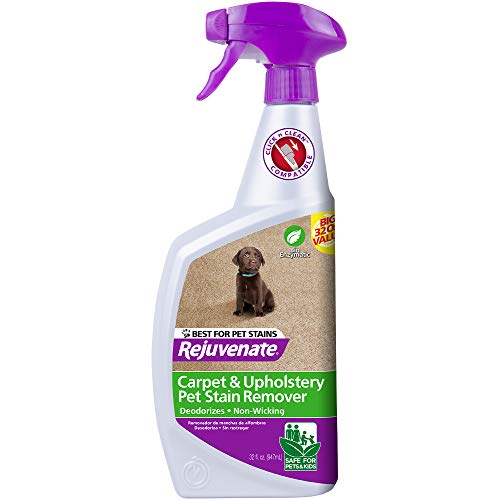 Rejuvenate BioEnzymatic Carpet amp Upholstery Spot amp Stain Remover Simply Spray and Walk Away – Removes Mud Chocolate Grass Pet Stains and More
