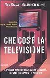 Che cos'è la televisione. Il piccolo schermo fra cultura e società: i generi, l'industria, il pubblico