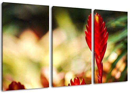Fette Henne Format: Dreiteiler Gesamt 120x80, Bild auf Leinwand bespannt, riesige XXL Bilder komplett und fertig gerahmt mit Keilrahmen, Kunstdruck auf Wand Bild mit Rahmen, günstiger als Gemälde oder Bild, kein Poster oder Plakat