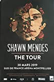 Poster Shawn Mendes – The Tour – 40 x 60 cm – Poster