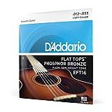 D'Addario EFT16 Cordes en bronze phosphoreux avec filet supérieur plat pour guitare acoustique/guitare à résonateur 12-53