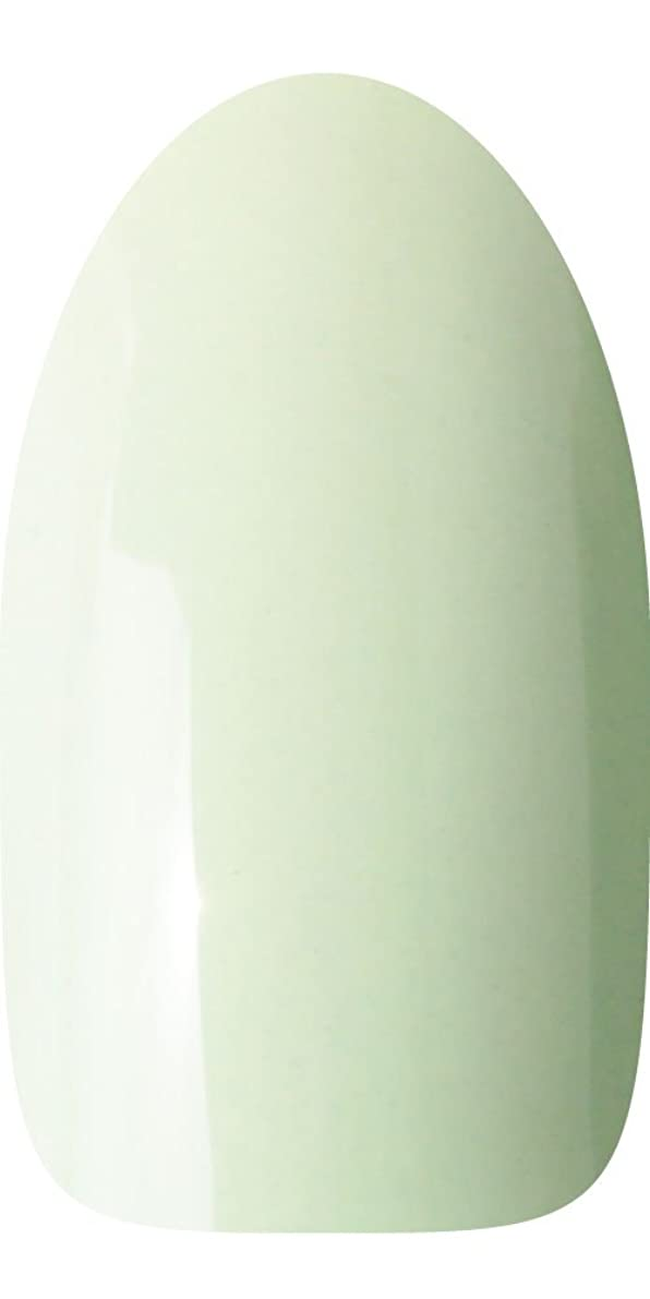 値する知り合い古風なsacra カラージェル No.016 そら豆