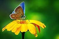黄色い花の蝶500ピース木製ジグソーパズル家族向けゲームプレイコレクションに最適