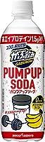 ポッカサッポロ がぶ飲み PUMPUP SODA 500ml×24本