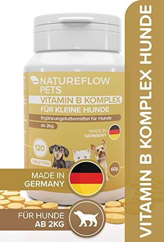 Natureflow Vitamin B Komplex Hund - Wertvolle B Vitamine für Hunde ab 2kg - 120 Vitamintabletten - Ergänzt um K3, Folsäure, Calcium und Biotin für Hunde