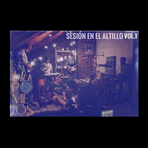 Sesión En El Altillo Vol.1