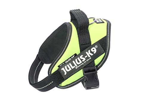 Julius-K9, Pettorina IDC per cani, Taglia: Mini, Verde neon