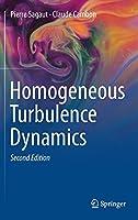 Homogeneous Turbulence Dynamics