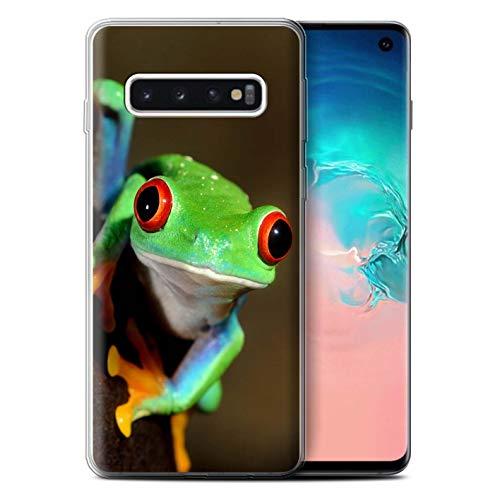 Hülle Für Samsung Galaxy S10 Wilde Tiere Frosch Design Transparent Dünn Flexibel Silikon Gel/TPU Schutz Handyhülle Hülle