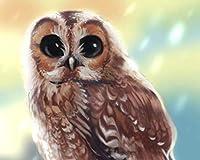 大人のための番号キットによるペイントカラー原稿フクロウ鳥の視線番号によるDiyデジタル絵画現代の壁アートキャンバスペイントホリデーギフト家の装飾 カスタマイズ可能 40x50cmフレームなし
