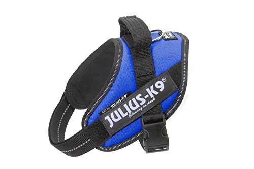 Julius-K9, 16IDC-B-M, IDC Powerharness, dog harness, Size: Mini, Blue