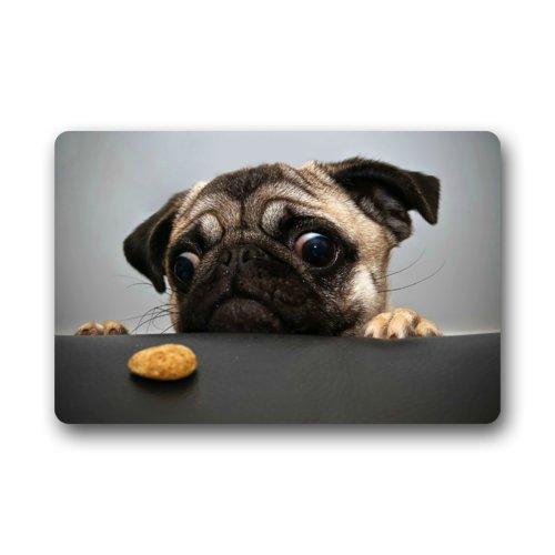 Pug Doormats Fantastische Fußmatte Funny Mops Want Cookie CTE Hund Tier Fußmatte/Front Tür/Bad-Teppich Mats £ ¬ Schlafzimmer Fußmatte 59,9cm (L) X 39,9cm (W)