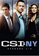 CSI: New York - The Complete First, Second & Third Season DVD Collection (Seasons 1, 2 and 3) [CSI: NY]