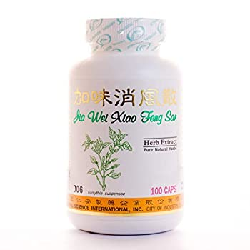 Skin Allergy Remedy Plus Dietary Supplement 500mg 100 Capsules  Jia Wei Xiao Feng San  J06 100% Natural Herbs