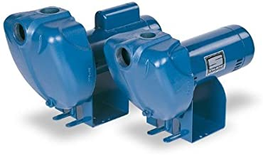 Pentair DS3HG-01 Single-Phase Self Priming High Head Centrifugal Pool and Spa Pump, 2 HP