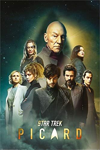 Pyramid Star Trek Picard Unisex Poster Multicolor Papier 61 x 91,5 cm Fan-Merch, TV-Serien