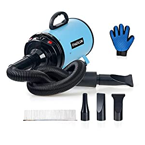 CHAOLUN Dog Dryer High Velocity Professional Pet Dog Blow Dryer 3.2HP – Dog Hair Grooming Dryer with Heater, Stepless Adjustable Speed, 3 Different Nozzles, a Comb & Pet Grooming Glove, Sky