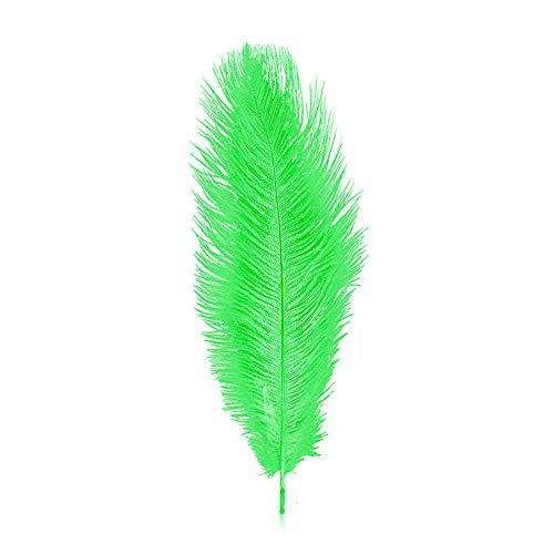 ZZM Lot de 10 plumes d'autruche 30-35 cm pour fête, mariage, décoration d'intérieur (vert)