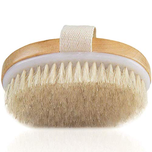 Dry Skin Body Brush - Natural Bristle Skin Exfoliating Brush - Remove Dead Skin & Toxins, Cellulite Treatment, Improves Lymphatic Functions, Exfoliates, Stimulates Blood Circulation - Medium Strength