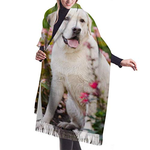 "Tengyuntong Bufanda de mantón Mujer Chales para, 27""x77"" Ladies Shawl Wrap Happy Labrador Dog Scarf For Women Cashmere Scarf Shawl Stylish Large Warm Blanket"