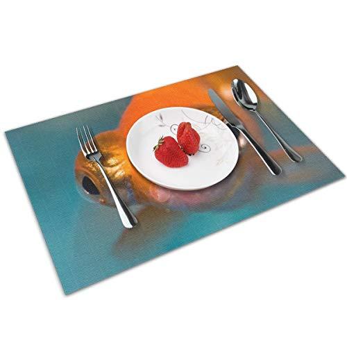 N/A Tafelmatten Placemats set van 4, Wasbare PVC Eetplaats Matten Hittebestendige Keuken Matten Downloaden Geweldige Telescoop Goudvis Aquarium