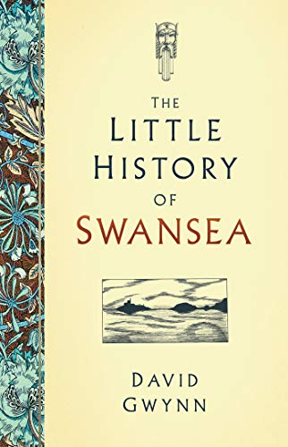 The Little History of Swansea (English Edition)