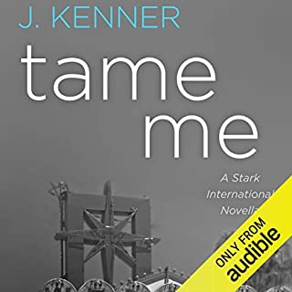 Tame Me audiobook cover art