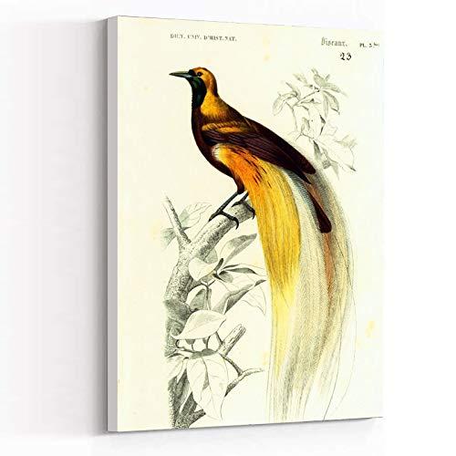 Catálogo para Comprar On-line Materiales para grabado y litografía - 5 favoritos. 12