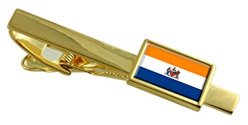 La città di Albany bandiera degli Stati Uniti oro Clip