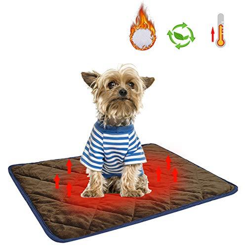 FORYOURS - Cojín de calor para cama de matrimonio, para gatos o perros