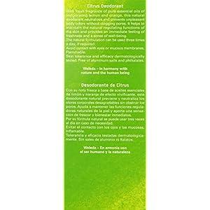 Weleda Deodorant Citrus, 3.4 FL Oz (Pack of 2)