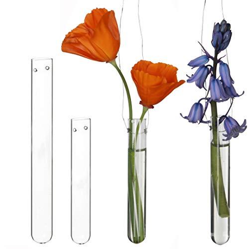12 Reagenzgläser für Blumen zum hängen, Reagenzglas Vase mit Loch zum aufhängen, Fensterdeko hängend, Hochzeitsdeko, Tulpenvase Glas, Blumen Vasen Deko, Hängevase Glas Set (10 cm)