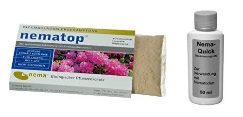 NemaTop (50 Mio) + Nema-Quick (50 ml) Kombi-Packung HB Nematoden gegen den Dickmaulrüssler