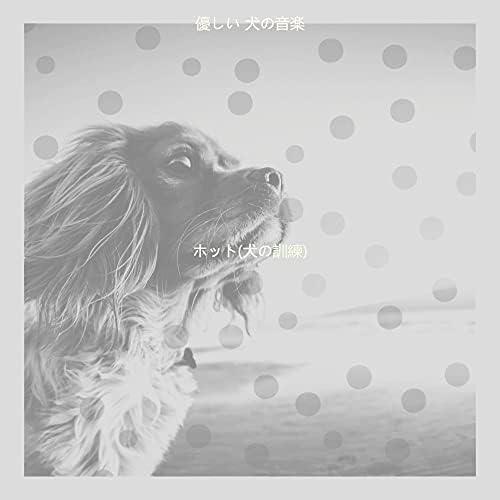 優しい 犬の音楽