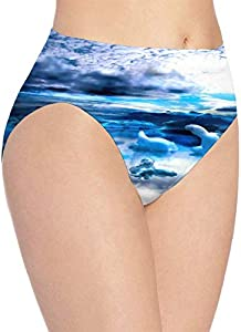 XCNGG Bragas Ropa Interior de Mujer 3D Print Soft Women's Underwear, Blue Berg Ice Clouds Sky Ocean Fashion Flirty Lady'S Panties Briefs