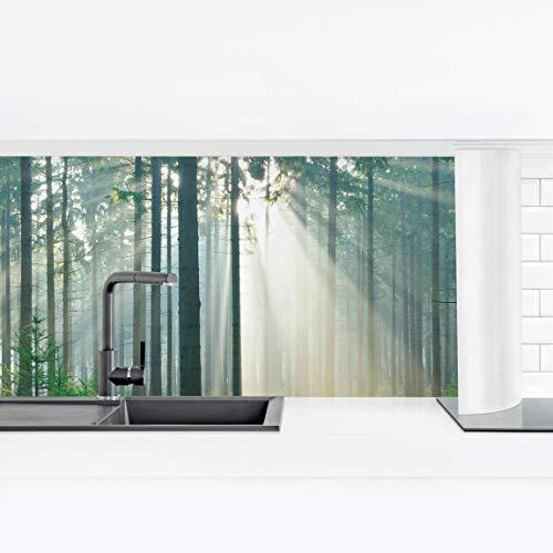 Bilderwelten Crédence adhésive Résistant à l'eau - Enlightened Forest Smart 40 x 140 cm