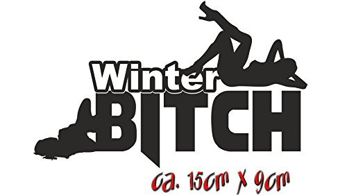 Winterbitch Winter Sticker Shocker Autoaufkleber Tuning Fun Gag (069 Neon Grün)