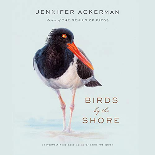 Birds by the Shore audiobook cover art