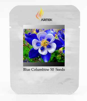 Rare Seeds Aquilegia Bleu Columbine vivace Fleur, professionnelle Pack, 50 graines / Pack, Very Beautiful Flower Garden E3370