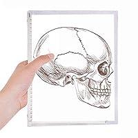 図の人間の頭蓋骨のプロフィール 硬質プラスチックルーズリーフノートノート