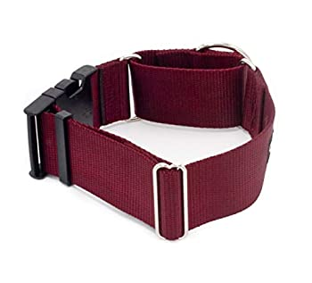 2 Inch Width Martingale w/Buckle Dog Collars - Heavy Duty Nylon  2  Width Dog Collars  Burgundy Large