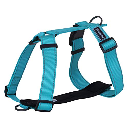 Dog No Pull Harness Form Ergonomic Adjustable Pet Harness for Everyday and Training for Small Medium and Large Dogs (Turquoise, Medium (Chest 25.5 - 41.5'))