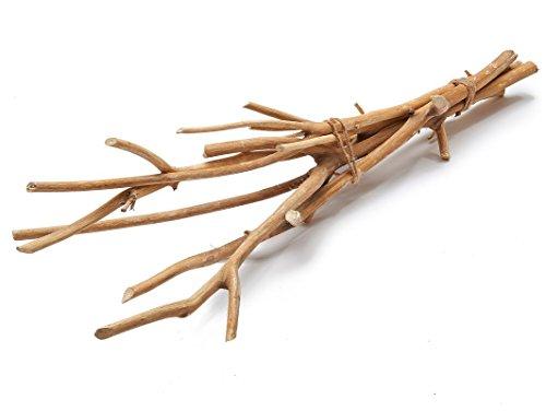 NaDeco Hartriegel Zweige Natur im Bund mit 5 Stück ca. 75cm Dogwood Dekozweig Dekoast Dekobaum Deko Zweige Deko Äste Dekozweige