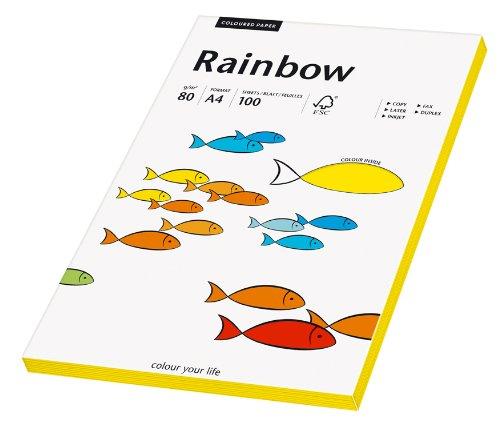 Papyrus 88042389 Druckerpapier Rainbow 80 g/m², A4 100 Blatt intensivgelb