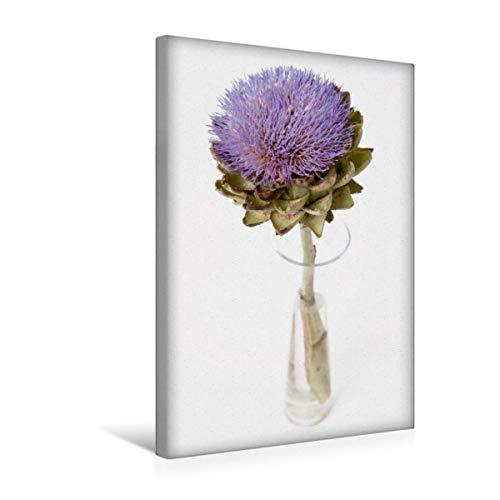 Premium Textil-Leinwand 30 x 45 cm Hoch-Format lila Artischocke | Wandbild, HD-Bild auf Keilrahmen, Fertigbild auf hochwertigem Vlies, Leinwanddruck von Tim E. Klein