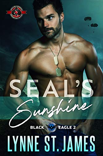 SEAL's Sunshine (Special Forces: Operation Alpha) (Black Eagle Book 2)