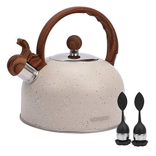 Hervidor de té, tetera de 2.8 cuartos de galón, hervidor de agua silbante, tetera de acero inoxidable para estufas de gas, inducción eléctrica, con mango de patrón de madera,...