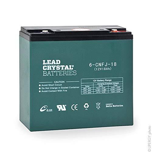 Lead Crystal - Akku Bleikristall 6-CNFJ-18 12V 18Ah M5