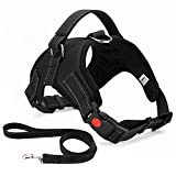 Musonic No Pull Dog Harness, Breathable Adjustable Comfort, Free Lead Included, for Small Medium Large Dog, Best for Training Walking (M, Black)